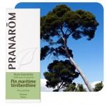 PIN MARITIME TEREBENTHINE 10 ML Pranarôm Huile Essentielle