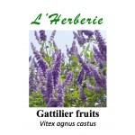 GATTILIER FRUIT 100GR