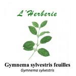 GYMNEMA SYLVESTRIS feuilles 100GR