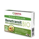 BENETRANSIT BIO BALLONNEMENTS 24 CUBES ORTIS
