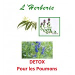 Detox Tisane pour les Poumons 100 gr