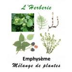 Emphysème mélange de plantes 100 gr