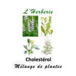 Cholestérol mélange de plantes 100 gr