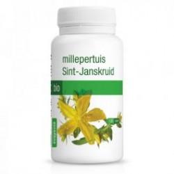 MILLEPERTUIS BIO PURASANA (120 gélules)
