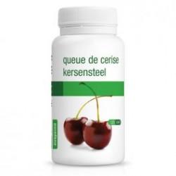 QUEUE DE CERISE PURASANA (120 gélules)