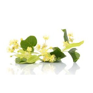 https://www.lherberie.com/2390-thickbox/tilleul-fleurs-entieres-100gr.jpg