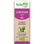 COLOGEM GC19 BIO - CONFORT INTESTINAL 50 ML - HERBALGEM