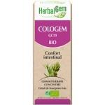 COLOGEM GC19 BIO - CONFORT INTESTINAL 15 ML - HERBALGEM