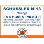 SCHUSSLER N° 13 Vecteur Energy 60  gélules végétales  de 410mg.