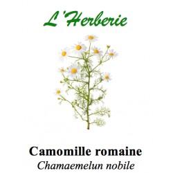 CAMOMILLE ROMAINE FL ENT 100GR