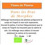 Tisane de Plantes Dans les bras de Morphée