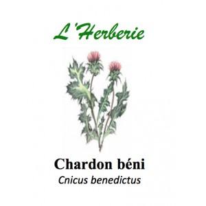 https://www.lherberie.com/2841-thickbox/chardon-beni-100gr.jpg