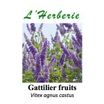 GATTILIER FRUIT 100GR