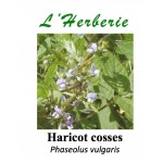 Haricot Cosses 100 gr Phaseolus vulgaris