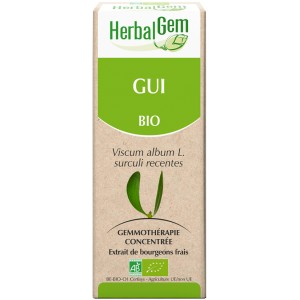 https://www.lherberie.com/3487-thickbox/gui-bourgeon-bio-circulation-15-ml-herbalgem.jpg