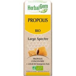 Propolis Large spectre 50ML  BIO, bourgeon, Herbalgem