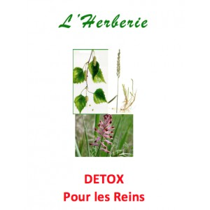 https://www.lherberie.com/5089-thickbox/detox-tisane-pour-les-reins-100-gr.jpg