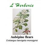 AUBEPINE FLEURS 100GR
