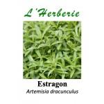 Estragon feuille coupé 100 gr Artemisia dracunculus