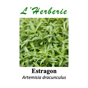 https://www.lherberie.com/5755-thickbox/estragon-feuille-coupe-100-gr-artemisia-dracunculus.jpg