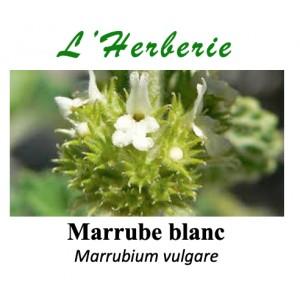 https://www.lherberie.com/5771-thickbox/marrube-blanc-100-gr-marrubium-vulgare.jpg