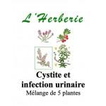 CYSTITE Mélange de 5 plantes 100 gr