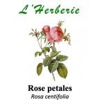 ROSE PETALE 100GR
