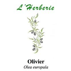OLIVIER FE CP 100GR