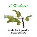 Amla fruit en Poudre 100gr
