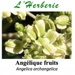 Angélique Fruits 100gr