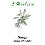 SAUGE OFFICINALE 100GR