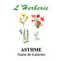 ASTHME Tisane de 6 plantes 100g