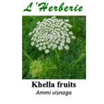 Khella fruits (Noukha) 100g
