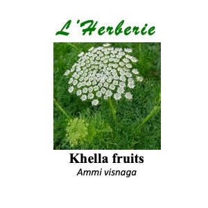 https://www.lherberie.com/5844-thickbox/khella-fruits-noukha-100g.jpg