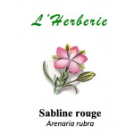 Sabline rouge 100g Arenaria rubra