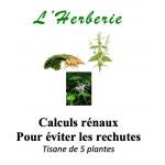 Calculs rénaux Pour éviter les rechutes Tisane de 5 plantes 100gr