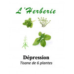 DEPRESSION LEGERE A MODEREE TISANE DE 6 PLANTES 100g