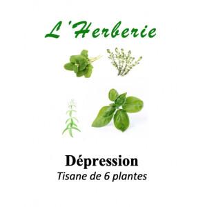 https://www.lherberie.com/5864-thickbox/depression-legere-a-moderee-tisane-de-6-plantes-100g.jpg