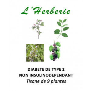 https://www.lherberie.com/5866-thickbox/diabete-de-type-2-non-insulinodependant-tisane-de-9-plantes-100gr.jpg