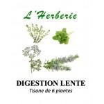 Digestion Lente Tisane de 6 plantes