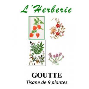 https://www.lherberie.com/5883-thickbox/goutte-tisane-de-9-plantes-100g.jpg
