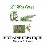 MIGRAINE HEPATIQUE ET DIGESTIVE Tisane de 5 plantes 100 gr