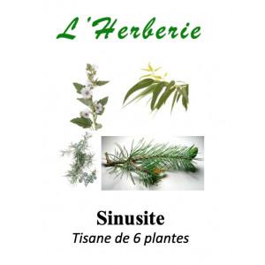 https://www.lherberie.com/5926-thickbox/sinusite-tisane-de-6-plantes-100-gr.jpg