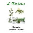 SINUSITE Tisane de 6 plantes 100 gr