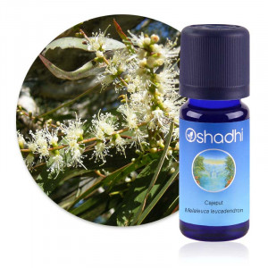 https://www.lherberie.com/6220-thickbox/huile-essentielle-cajeput-melaleuca-leucadendron.jpg
