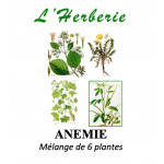ANEMIE Mélange de 6 plantes 100 gr