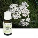 Achillée millefeuille (herbe fl.) HUILE ESSENTIELLE PRANAROM 5 ML